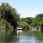 Mit Stocherkähnen durch das Naturschutzgebiet Taubergießen
