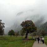 Der große Ahornboden, wolkenverhangen
