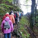 Über den Felsenweg nach Schlehdorf