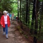 Wanderung durchs Monbachtal