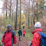 Auf dem Abstieg nach Rudersberg [Foto: W. Speiser]