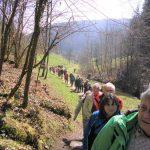 Auf dem Weg zur Schlossberghütte [Foto: I. Speiser]