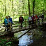 Im Wüstenbachtal (diesmal eine Holzbrücke) [Foto: Bader]