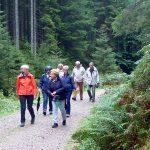 Vom Ruhestein nach Obertal